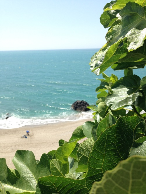 Playa Bil-Bil