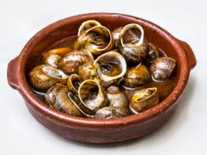 caracoles snails costa brava tipico typical dish comida gastronomia gastronomy